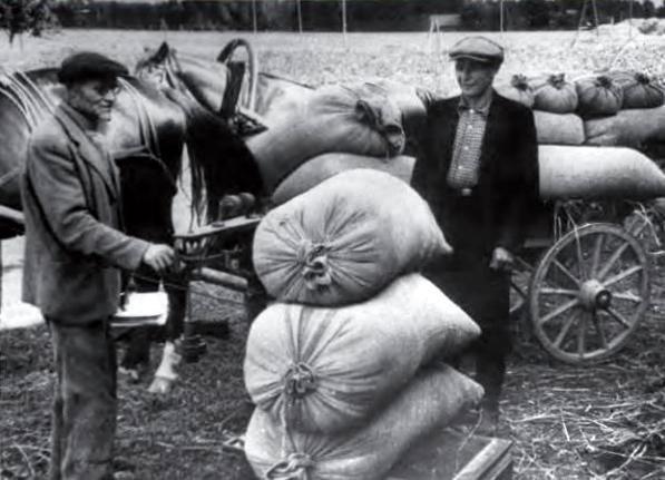 https://istoriki.su/uploads/posts/2019-03/1551449800_cesu-rajona-kolhoza-stalina-cels-kolhoznieki-avansa-sanem-1949_-gada-razas-pirmos-graudus-fotogrfs-nezinms.jpg